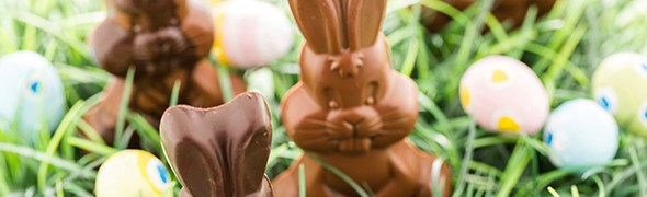 bunny-grass (1)